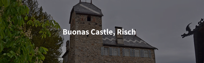 All Castles in the canton of Zug, Switzerland buonas castle risch Castles in the canton of Zug