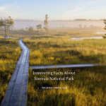 Interesting Facts About Soomaa National Park