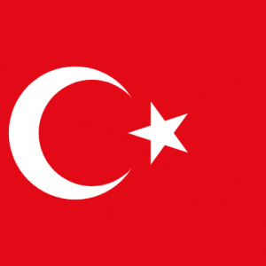 Flag of Turkic Council Flag of Turkey Flag of Turkic Council